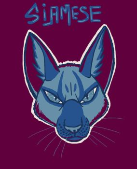 Color challenge 6 Siamese cat by BullTerrierKa