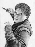 Harry Potter by 22Zitty22