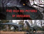Resources: Dinosaurs by pelleron