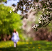 spring mood by fly10