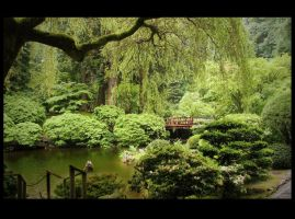 Japanese Garden by natronics