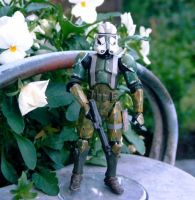 Commander Gree custom by Mace2006