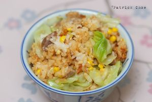 Salted rice 1 by patchow