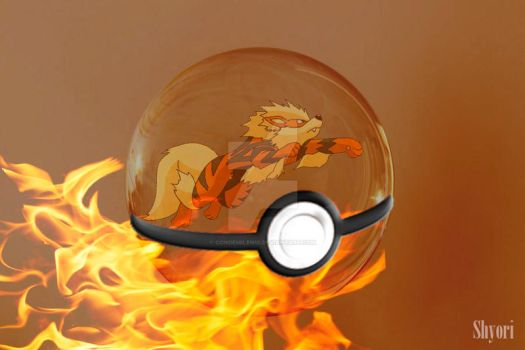 Pokeball Arcanine by condemilenio