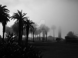 Fog Hidden Lighthouse Black and White by ShipperTrish