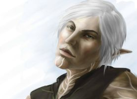 Dragon Age 2: Fenris by Splintter