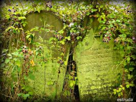 Buried With The Berries by Estruda