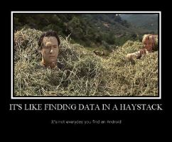 Data in a Haystack by LadyData