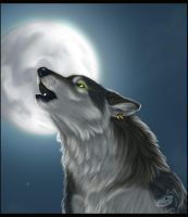 Howl-detail by Yellow-eyes