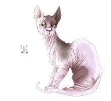 Mr.Cat by dog93