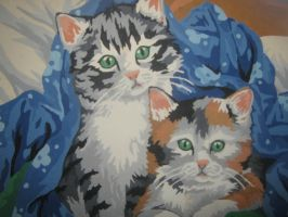 Kitties In A Blanket by music-luver-2010