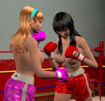 Nicole vs Lilly 007 by chuy9502
