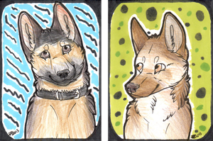 Double ACEO. by Daisylasy3