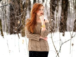 Let it snow by ChrisPhotographer