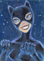 Catwoman color card by LEXLOTHOR