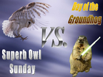 The Superb Owl vs. the Ground Hog by Deneb-Vir
