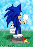 sonic from behind by footman