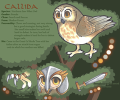 Callida Ref by therougecat
