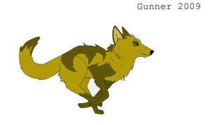Gunner reference 2009 by any204