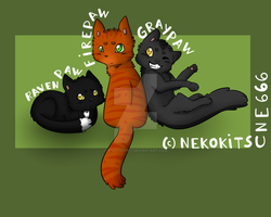 Ravenpaw, Firepaw and Graypaw by SpottedpeIt