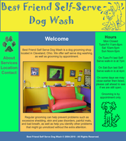 Best Friend Dog Wash Website by Kanamai