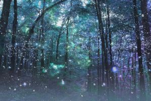 Enchanted Forest by 4te