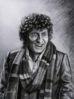 The Fourth Doctor by Lenka-Slukova
