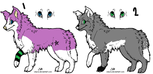 2 border collie adopts CLOSED by AmazingAdoptablez