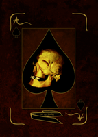 Ace of Spades by querelle-interieure