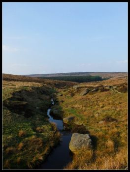 Padley Gorge 1 by Tyreal2012