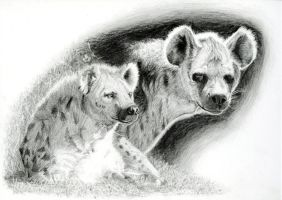 Hyenas by Doodlee-a