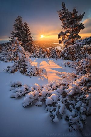 Instant of Light by ~MaximeCourty