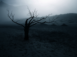 In The Valley Of The Dead by SamKross-Stock