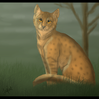 Leopardstar of RiverClan by TheMoonfall
