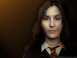 HP: Ms. Granger by sleekpixels