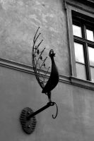 Peacock Ornament. Monochrome. by johnwaymont