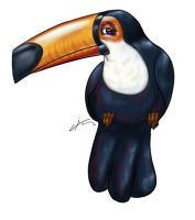 Toucan 002 by AngeloCarvalho