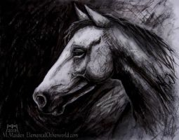 Horse Sketch by DarkLiminality