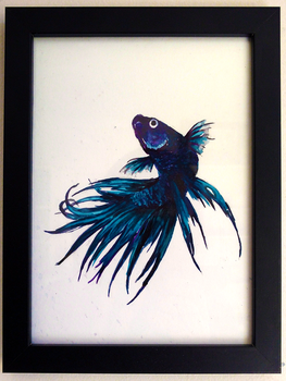 Watercolour Siamese Fighting Fish 2 by canned-sardines
