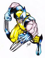 Wolverine Colour by PocketNinja85