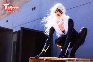 The Black Cat cosplay by Tiffany Dean by BabyGirlFallenAngel