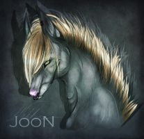 JooN by himikGIRL