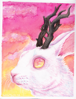 Sunset Jackalope by Koeskull