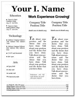 Resume Layout 3 by eriney