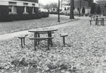 The Lonliest Bench by Back-Off-I-Bite