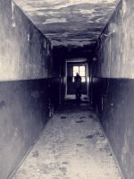 the corridor by akronic