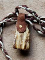 Brown Petrified Wood and Leather Necklace by lupagreenwolf