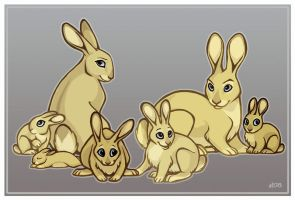 A Family of Rabbits by lyosha