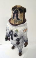 Space-Dog by Thomasotom