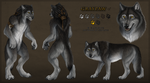 Graypaw Reference Sheet by Sidonie